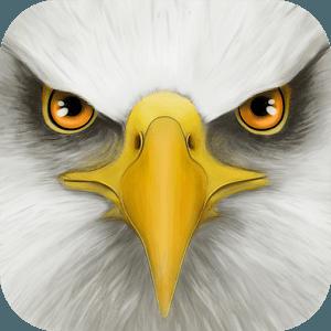Ultimate Bird Simulator